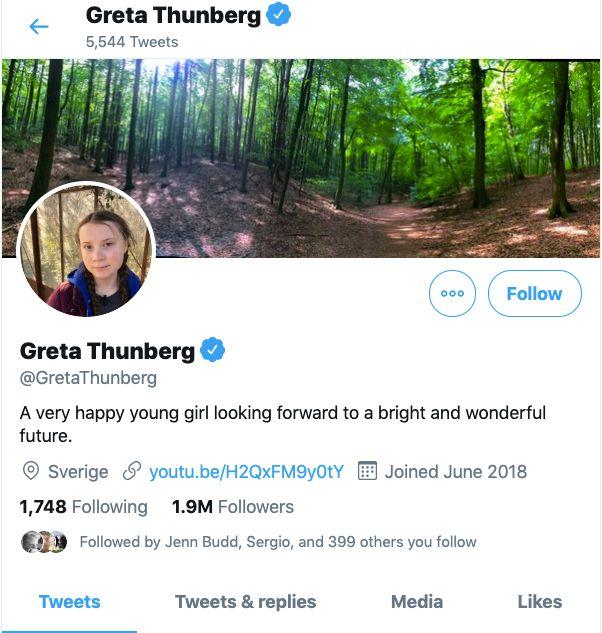 Greta twitter.jpeg
